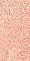 Rosa 10x20 cm - 5,55%